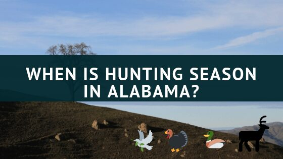 When is hunting season in Alabama
